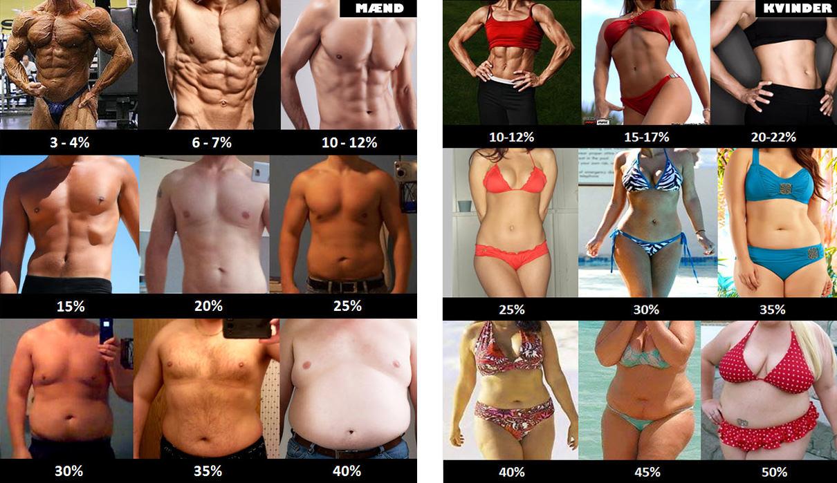 Mål din fedtprocent