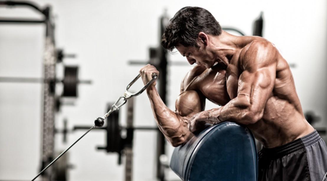 Hvor lang tid tager det at øge muskelmassen