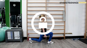 Lunges video