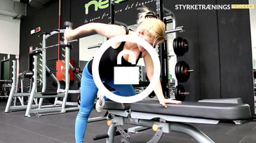 Triceps kickbacks video