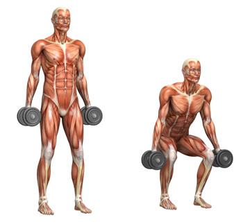 Squat med håndvægte
